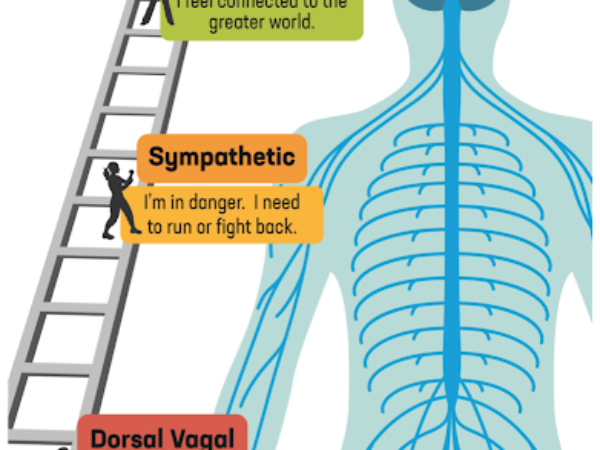 A Ladder and a Map: Tools for Emotion Regulation